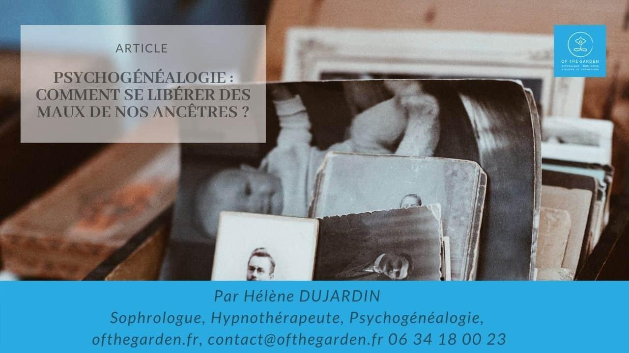 psychogenelagie comment se liberer maux de nos ancetres